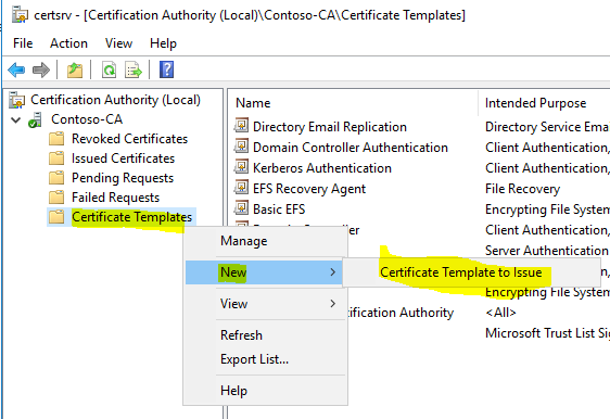 CA VPN Certificate